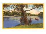 Branch Brook-Park, Newark, New Jersey Poster