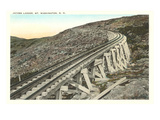 Jacob's Ladder Tracks, Mt. Washington, New Hampshire Prints