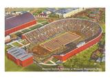University Stadium, Minneapolis, Minnesota Print