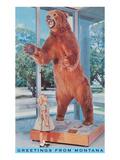 Greetings from Montana, Girl with Stuffed Bear Prints