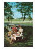 Roadside Family Picnic Poster