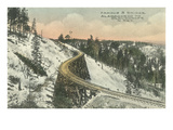 Famous S Railway Bridge, Cloudcroft, New Mexico Poster
