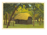 Reconstructed Hut, Roanoke Island, North Carolina Poster