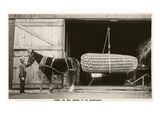 Giant Ear of Corn with Plow Horse, Nebraska Print