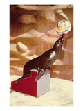 Performing Seal, Retro Prints