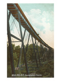 Frankenstein Trestle, White Mountains, New Hampshire Print