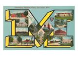 University of Michigan Views, 'M' Prints