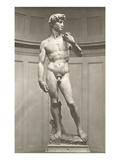 Michelangelo's David Prints