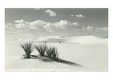 White Sands National Monument, New Mexico Art