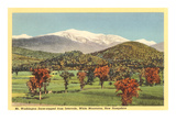 Mt. Washington, Intervale, New Hampshire Posters