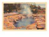 Oblong Geyser, Yellowstone Park, Montana Print