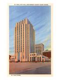 City Hall, St. Paul, Minnesota Prints