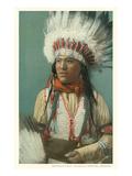 Buffalo Calf, Jicarilla Apache Print