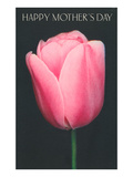 Happy Mothers Day, Pink Tulip Prints