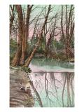Creek, Greensboro, North Carolina Poster