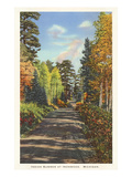 Indian Summer in Ironwood, Michigan Prints