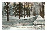 University in Winter, Ann Arbor, Michigan Prints