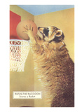 Raccoon Playing Basketball Prints