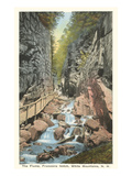 The Flume, Franconia Notch, New Hampshire Kunstdrucke