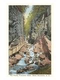 La gola, Franconia Notch, New Hampshire Stampe