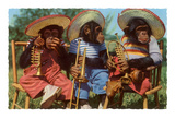 Three Chimpanzees with Brass Instruments and Hats Prints