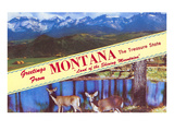 Greetings from Montana, Treasure State Prints