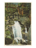 Paradise Falls, Lost River, New Hampshire Posters