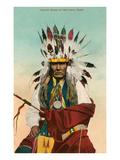 Cheval Jaune, Indien Ponca Affiches