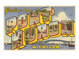 Souvenir de Port Huron, Michigan Poster