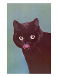 Black Cat Licking Chops Prints