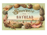 Souvenir from Bay Head, New Jersey Print