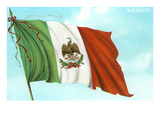 Mexican Flag Póster