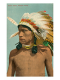 Wander Horse, Sioux Indian Print