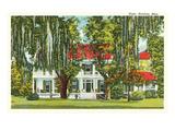 Elgin Mansion, Natchez, Mississippi Prints