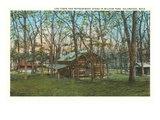 Log Cabin, Kalamazoo, Michigan Posters