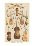 Variety of Stringed Instruments Prints