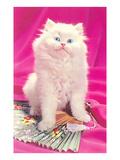 Alert Fluffy Kitten Art