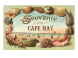 Souvenir from Cape May, New Jersey Prints