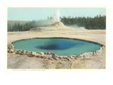 Castle Geyser, Yellowstone Park, Montana Prints