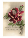 Dolores Del Rio, Mexican Star Posters