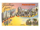 Greetings from Princeton, New Jersey Print