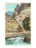 Horse-Drawn Carriage, Yellowstone Park, Montana Prints