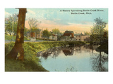 Battle Creek River, Battle Creek, Michigan Prints