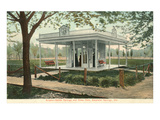 Sulpho-Saline Springs, Excelsior Springs, Missouri Prints