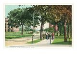 University of Minnesota, Minneapolis Posters