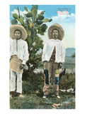 Indians from Central Mexico Prints