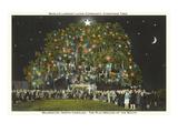 Albero di Natale comunitario, Wilmington, North Carolina Stampe