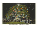 Community Christmas Tree, Wilmington, North Carolina Prints