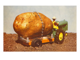 Giant Potato on Toy Tractor Posters