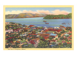 Bird's Eye View of Old Acapulco Prints